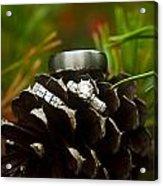 Pine Cone And Wedding Band Acrylic Print