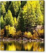 Pine Reflection At Georgetown Lake Colorado Acrylic Print