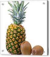 Pineapple And Kiwis Acrylic Print