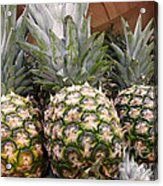 Pineapples Acrylic Print by Methune Hively