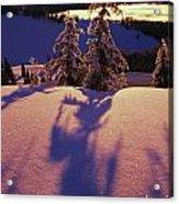 Pink And Purple Sunrise Shadows Of Snow Acrylic Print
