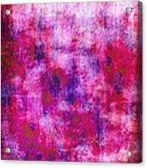 Pink Blueberries Acrylic Print