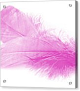 Pink Doubles Acrylic Print