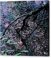 Pink River Acrylic Print