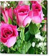 Pink Roses And Gypsophila Bouquet Acrylic Print