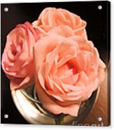 Pink Roses In A Globe Acrylic Print