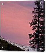 Pink Sunset Acrylic Print by Lisa  Spencer
