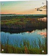 Pink Swamp Sunrise Acrylic Print