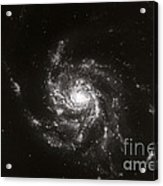 Pinwheel Galaxy, M101 Acrylic Print by Science Source