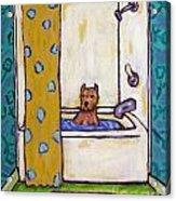 Pit Bull Terrier Taking A Bath Acrylic Print