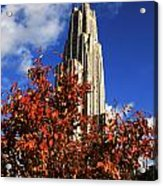 Pittsburgh Autumn Leaves At The Cathedral Of Learning Acrylic Print by Will Babin