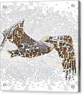 Pixel Pelicano Acrylic Print