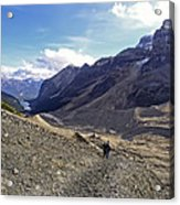 Plain Of Six Glaciers Trail - Lake Louise Canada Acrylic Print