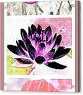 Plant Material Acrylic Print