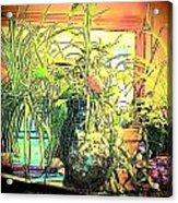 Plants Acrylic Print by YoMamaBird Rhonda