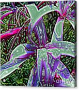Plasticized Cape Lily Digital Art Acrylic Print by Merton Allen
