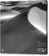 Platinum Dunes Acrylic Print