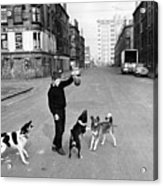 Playing In Street Acrylic Print by Albert McCabe