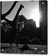 Playing With The Sun II - Philadelphia - Pensilvania - Sunset Acrylic Print