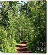 Pleasant Trail Acrylic Print
