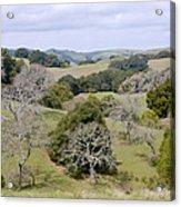 Pleasanton Ridge - North Acrylic Print