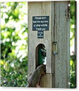 Please Don't Feed The Squirrels Acrylic Print