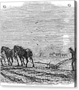 Ploughing, 1846 Acrylic Print