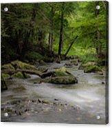 Pocantico River In The Rain Acrylic Print
