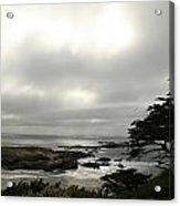 Point Lobos View Acrylic Print by Suzanne Lorenz