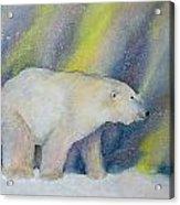 Polar Lights Acrylic Print