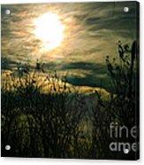 Polarized Sunset Acrylic Print