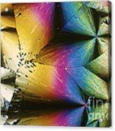 Polypropylene Acrylic Print