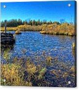 Pond 1 Today.psd Acrylic Print