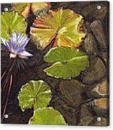 Pond Flower Acrylic Print