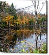 Pond On Limekiln Road Acrylic Print