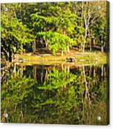 Pond Reflection Guatemala Acrylic Print