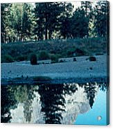 Ponderosa Reflections Acrylic Print