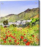 Poppies At Las Hortichuelas Acrylic Print