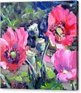 Poppy Garden Acrylic Print