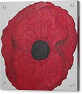 Poppy Of Rememberance Acrylic Print