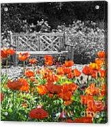 Poppy Seed Bench Acrylic Print