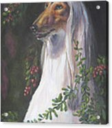 Portrait Of A Domino Afghan Hound Acrylic Print by Gayle Rene