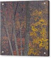Portrait Of Autumn Acrylic Print