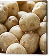 Potatoes Acrylic Print by Elena Elisseeva