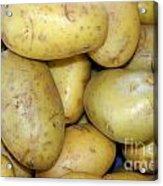 Potatoes Acrylic Print