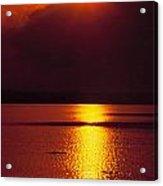 Potomac Sunrise Washington Dc Acrylic Print