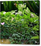 Potted Shades Of Green Acrylic Print
