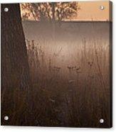 Prairie Pre Dawn Acrylic Print