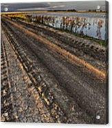 Prairie Road Storm Clouds Mud Tracks Acrylic Print
