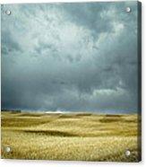 Prairie Storm Alberta Acrylic Print